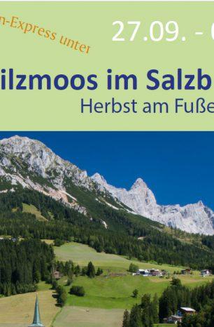 Fahrt des Florian-Express 2020: Ziel ist das Salzburger Land